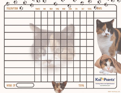 Kids Charts: Calico Cat Theme