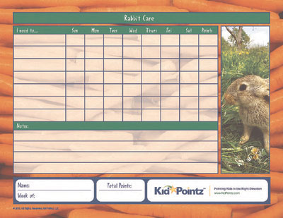Pet Care Chart for Rabbit